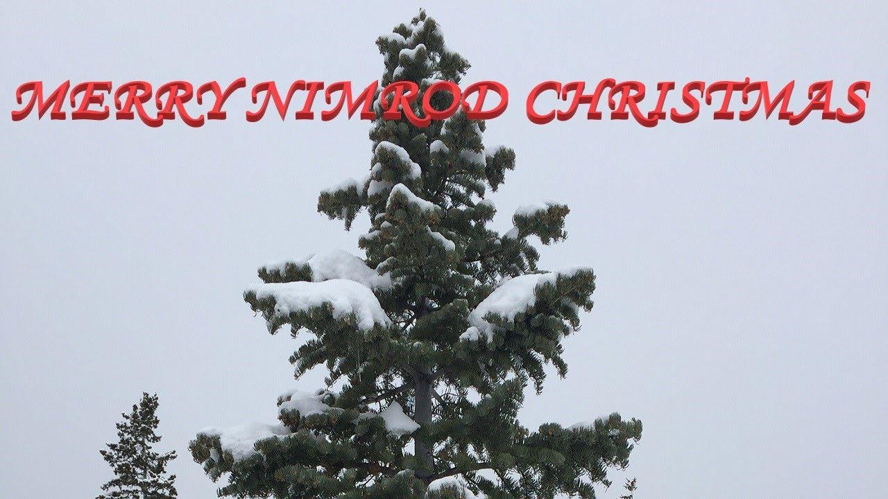 Nimrod Christmas Tree / The X Mas Nimrod Truth / Choose