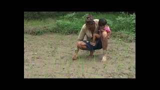 NEPAL Rice, far-western Nepal