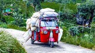The Tuk-Tuk Tea Truck Race | Top Gear: Series 26