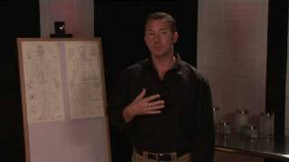 Video Acupressure Therapy : Acupressure Points in the Chest download MP3, 3GP, MP4, WEBM, AVI, FLV Juli 2018
