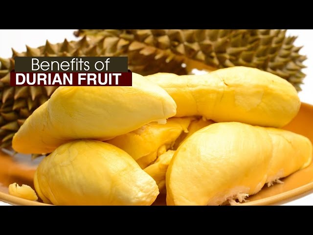 10 Amazing Health Benefits of DURIAN FRUIT