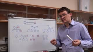 Анализ родословных. Урок 5. Задача 7.3 (быстрый разбор в конце видео)