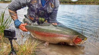 Fly Fishing for the BIGGEST TROUT in the WORLD