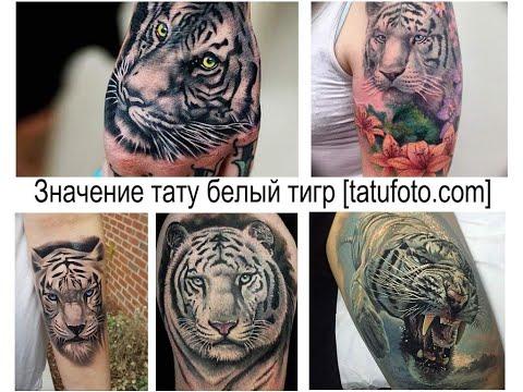 Значение тату белый тигр - факты и фото для сайта tatufoto.com