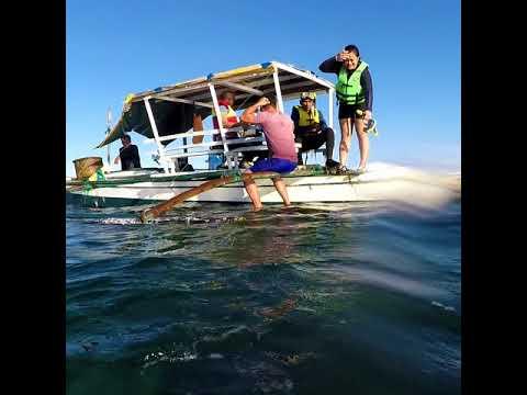 Baliangao Protected Seascape and Landscape