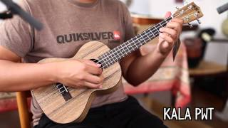 Top 9 Tenor Ukuleles Under $200