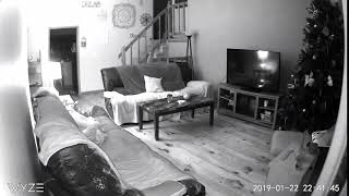 Paranormal Noise on Security Camera 2019