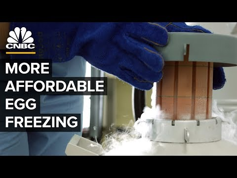Egg Freezing And The Future Of Reproduction