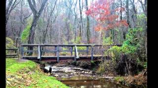 Tennessee State Parks Located Within a One Hour Drive From Knoxville, TN