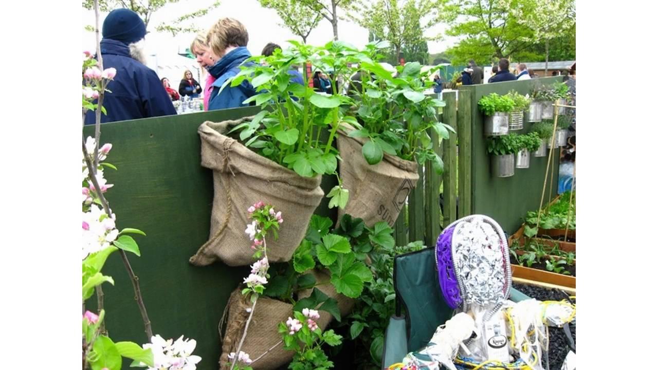 Small Vegetable Garden Ideas YouTube