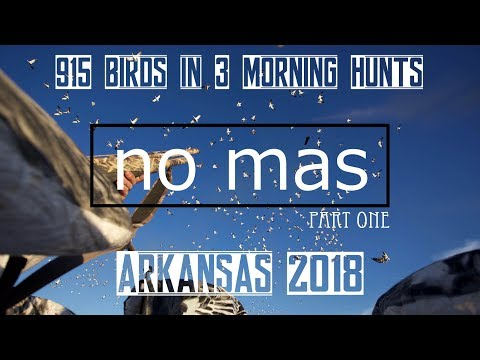 Spring Snow Goose Hunting Arkansas 2018 (No Mas Part One) Epic 915 Birds In 3 Morning Hunts !!