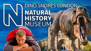 Sleep at the London Natural History Museum - Dino Snores, unusual places to stay in London