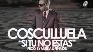 Cosculluela FT Miguel DLS-Si  Tu Te Vas(Remix)Mp3