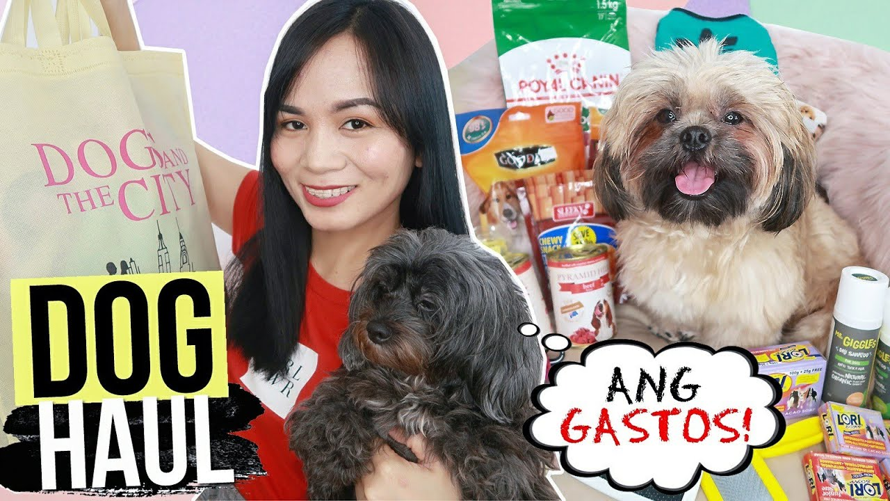 HAUL : DOG ESSENTIALS, GROOMING, FOOD & TREATS! (for DOG LOVERS) ❤️