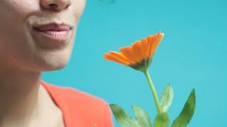Fleurs Comestibles - un bouquet de Fleurivore