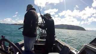 Wellington Saltwater - Light Tackle Fishing - Spring