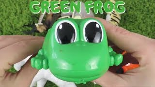 Learn Colors and Learn Animals with GREEN FROG and It's Cute Toy Friends