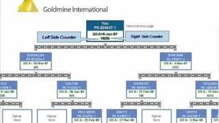 GMI- Basic Business Presentation In English