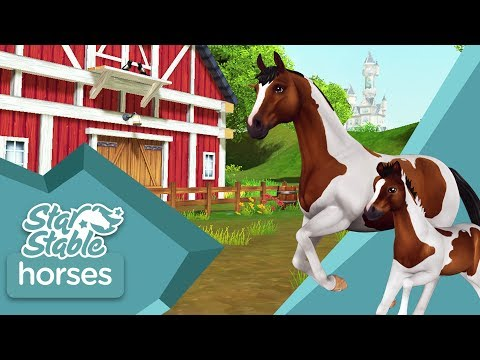 Star Stable Horses - Apps on Google Play