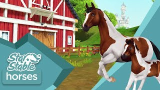 Star Stable Horses App – Updated trailer! (Android/IOS)