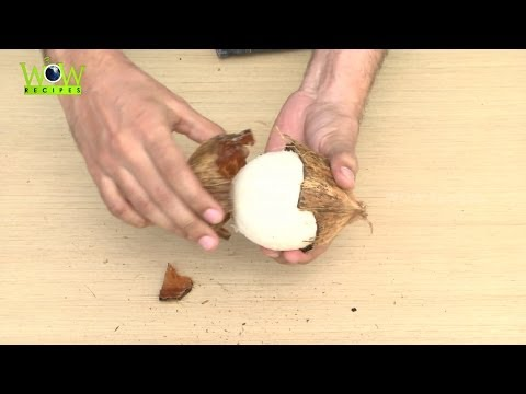 Easiest way to Remove Coconut Flesh From Shell With in 30 Seconds | Best Kitchen Tips | Wow Recipes