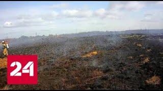 В ЕАО спасатели проводят пал травы и ловят нарушителей - Россия 24