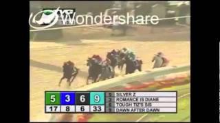 Zenyatta- All her 20 races