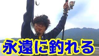 屋久島での朝は無限に魚が釣れた!!
