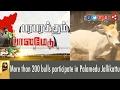 More Than 200 Bulls Participate In Palamedu Jallikattu | Live Report video