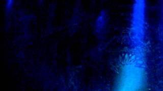 Tanz der Vampire - Finale 1. Akt vor dem Schloss - Jan Ammann