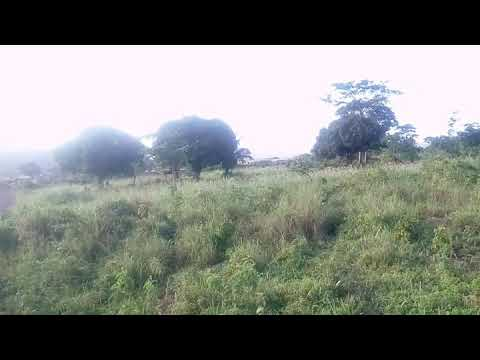 Buy land in Accra Ghana very cheap and best location for business call 0240217253