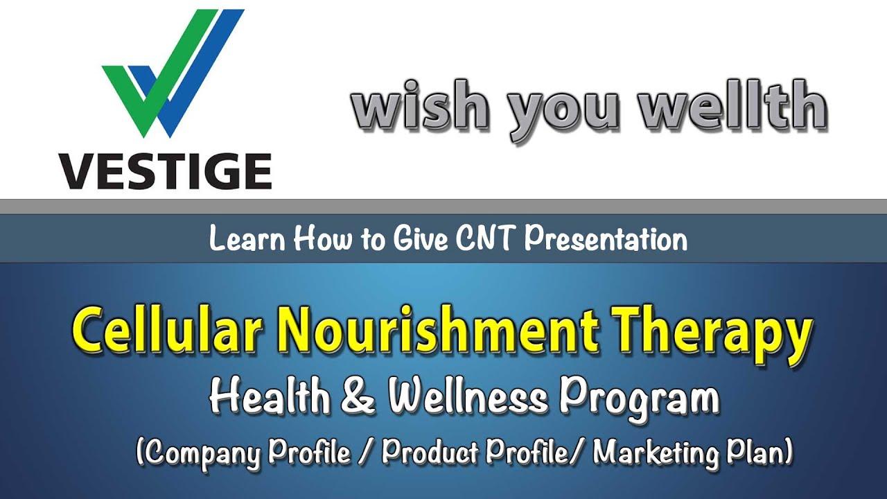 Download Vestige Full CNT Training Video | Company Product & Marketing Plan| CNT ट्रेनिंग  हिंदी में