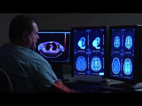 Matcha consumption improves Brain cell Activity!