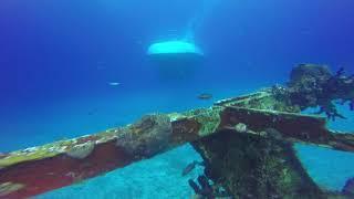 Cozumel 2018 SCUBA Diving