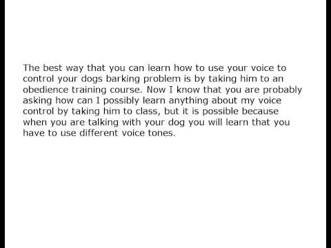 Dog Barking Control Without a Bark Collar