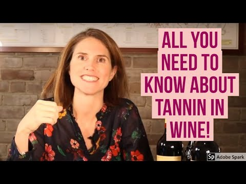 Mastering Wine: What are Tannins in Wine?