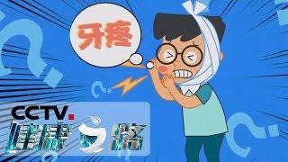 《健康之路》 20191108 牙疼为何挥之不去| CCTV科教
