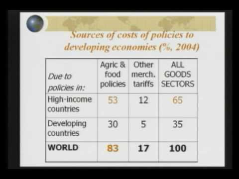 10/14/08 - World Food Prices Seminar - Anderson Part 2