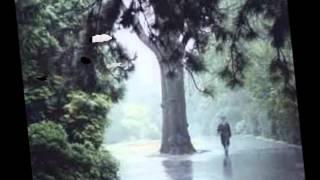 STAND A LITTLE RAIN