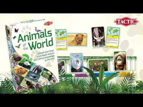 Tactic lauamäng Maailma loomad