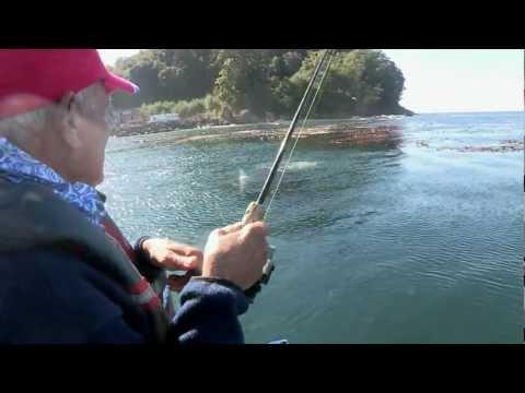 Port Angeles Coho Fishing