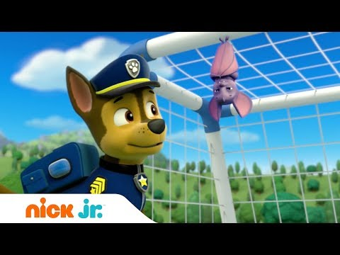 Щенячий патруль | Лучшее | Хороший спортсмен | Nick Jr. Россия