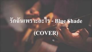 รักฉันเพราะอะไร - Blue Shade COVER by เนกึนซอก