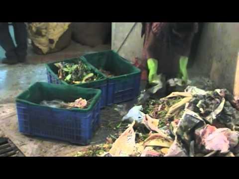 August Park Waste Management Video
