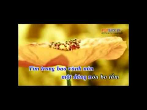 karaoke: TÌM EM TRONG CHIỀU HỘI LIM -QUANG LÝ - MINH THÀNH(song ca cho nữ)