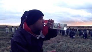 Baixar #10 Przez Świat na Fazie -  Wódka z pingwinami