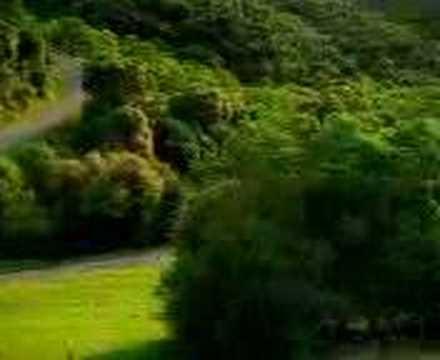 Лесной царь (баллада) — Википедия