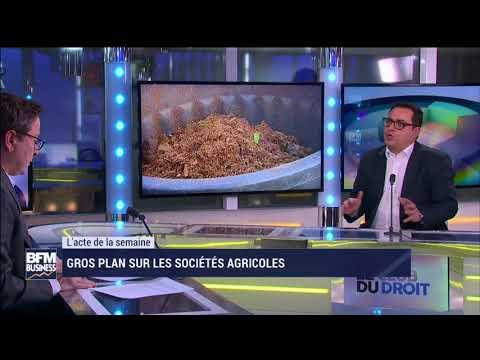 Les sociétés agricoles   Le Club du Droit