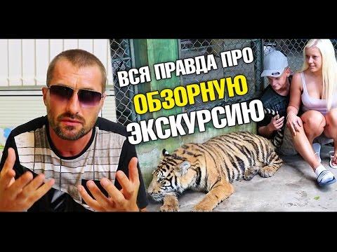 Что такое Обзорная экскурсия на самом деле? Тигры На Пхукете. Странная сигнализация