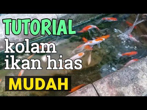 tutorial sederhana kolam ikan minimalis - youtube